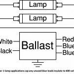 277 Volt Light Wiring Diagram | Wiring Diagram   277 Volt Lighting Wiring Diagram