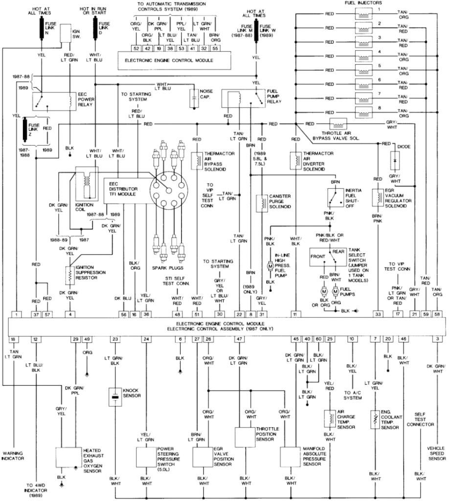 1995 F 150 Wiring Diagram