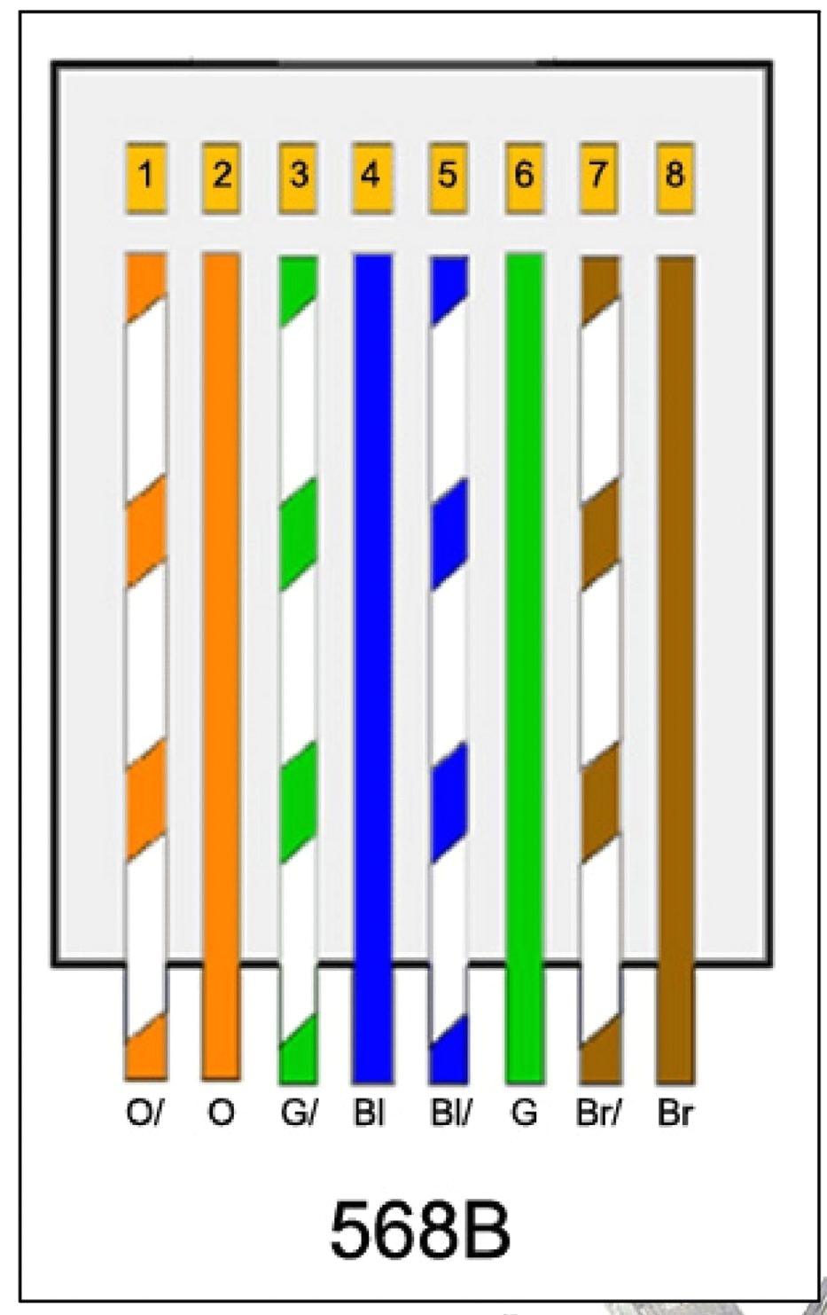 B Wiring Diagram - Great Installation Of Wiring Diagram • - Cat5 B Wiring Diagram