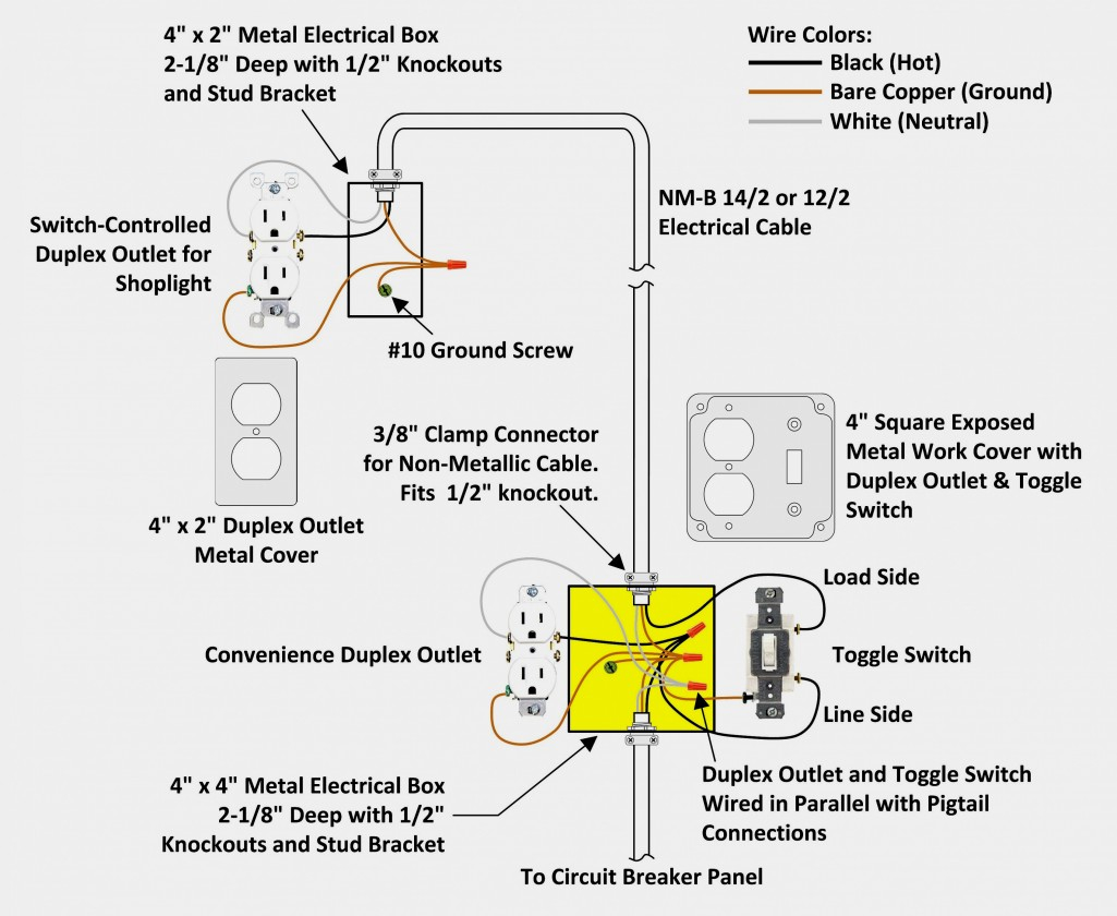 Best Light Socket Wiring Diagram Australia Electrical Why Is My - Light Socket Wiring Diagram