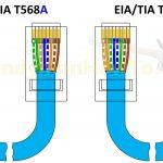 Cat 5A Wiring Diagram   Creative Wiring Diagram Templates •   Cat5E Wiring Diagram Wall Plate