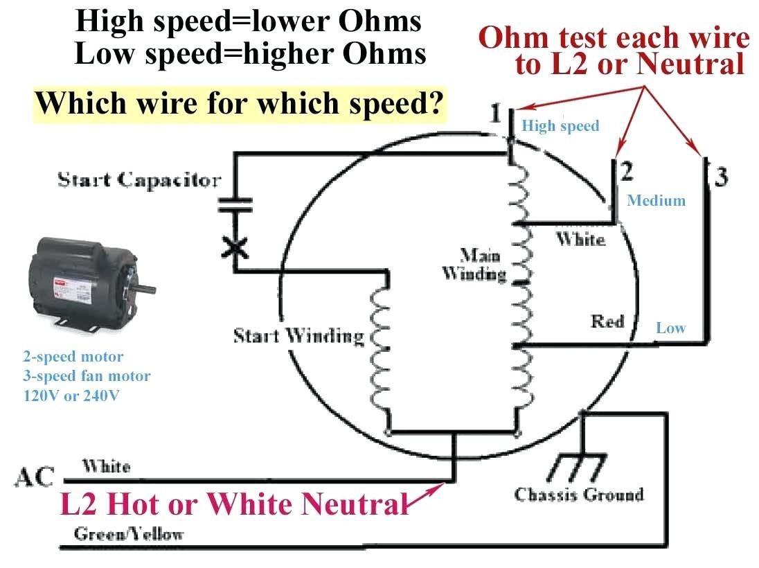 Century Blower Motor Wiring Diagrams - New Era Of Wiring Diagram • - Century Electric Motor Wiring Diagram