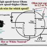 Century Furnace Blower Motor Wiring Diagram   Manual E Books   Furnace Blower Motor Wiring Diagram