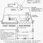 Copeland Potential Relay 040 0166 19 Wiring | Wiring Diagram   Potential Relay Wiring Diagram