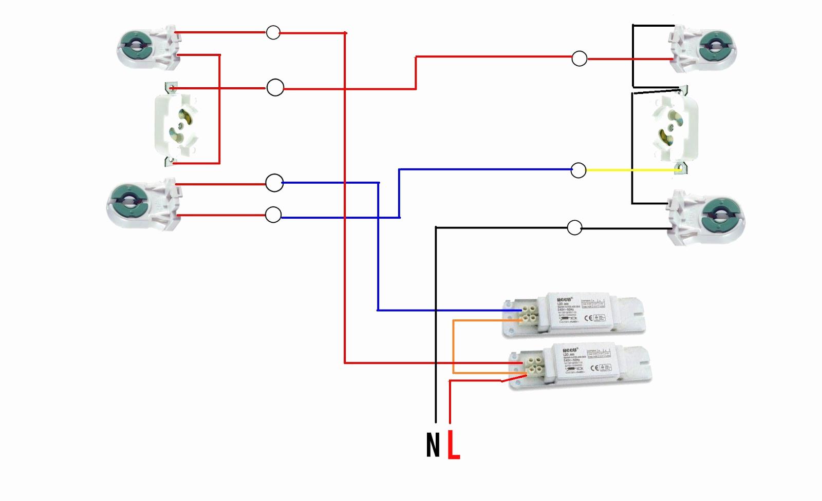 Diagram Of Fluorescent Light Fixture – Canadagoosejackets-Sale.ca - Fluorescent Light Wiring Diagram