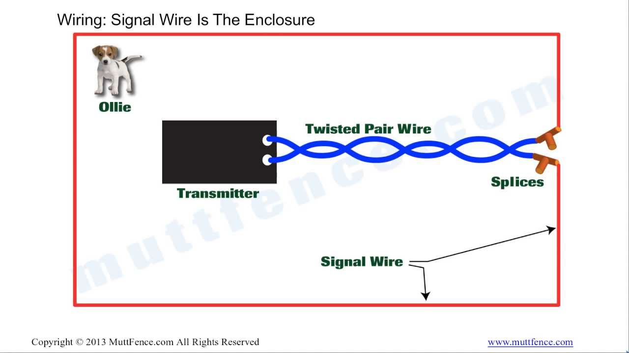 In Ground Fence Wiring Basics - Youtube - Invisible Fence Wiring Diagram