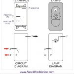 Rocker Switch Wiring Diagrams | New Wire Marine   Lamp Wiring Diagram