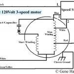 Three Speed Furnace Fan Motor Wiring | Wiring Diagram   3 Speed Fan Motor Wiring Diagram