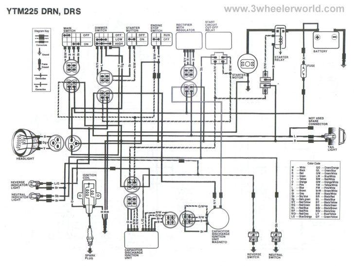 Yamaha Warrior 350 Wiring Diagram